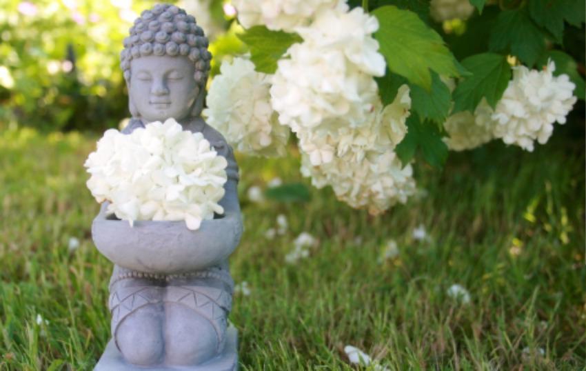 buddha-753016_1920.jpg