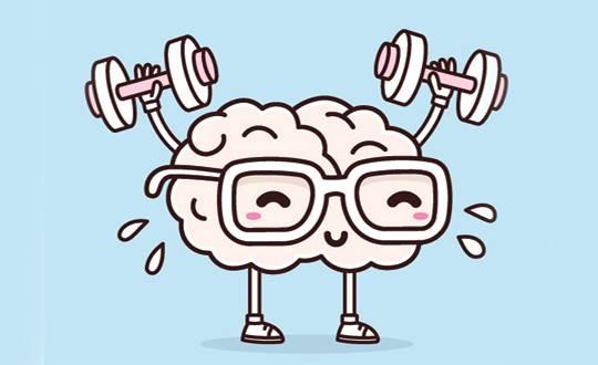 brain540 (1).jpg